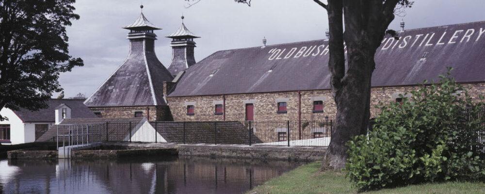Old Bushmills Distillery Case Study